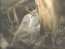 "Ed Helms milking a cow...""Oh Geez!!! I got it on me!!"""